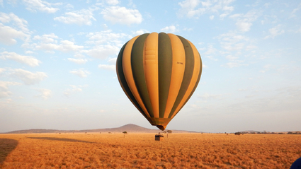 6-Day Luxury Tanzania Safari / Fly Back from Serengeti